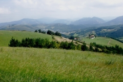 Elorriaga