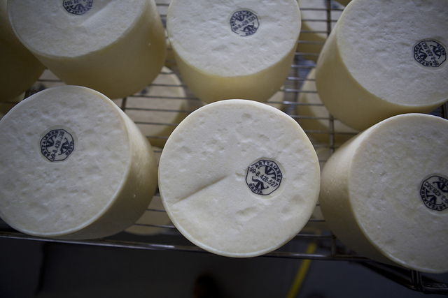 Basque_Cheese